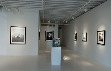 Fragile Land Gallery