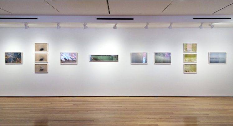 Installation view at Octavia Gallery from Fluid States